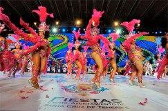 carnaval santa cruz de tenerife 2014
