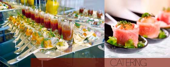 catering para eventos fiestas cumpleaños y bodas