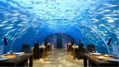 cena luna de miel en las maldivas